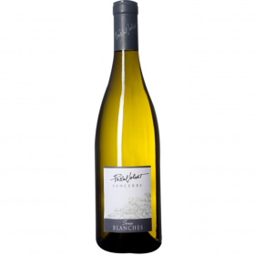 PASCAL JOLIVET POUILLY FUME TERRES BLANCHES